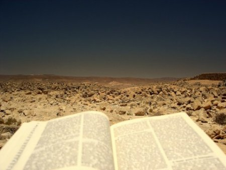 Parole-Desert